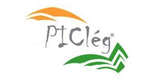 picleg