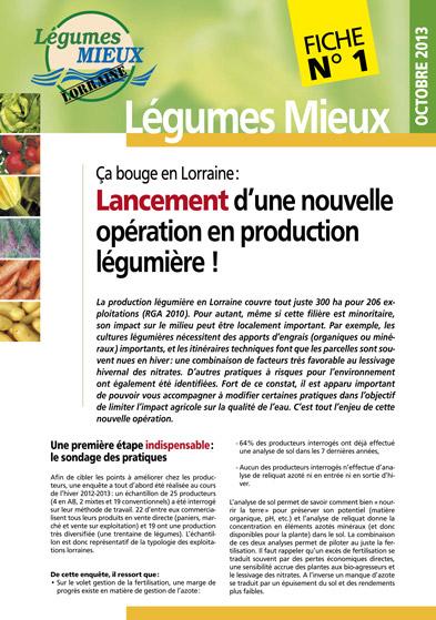 Fiche Légumes Lorraine n°1