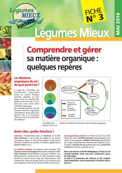 Fiche Légumes Lorraine n°3