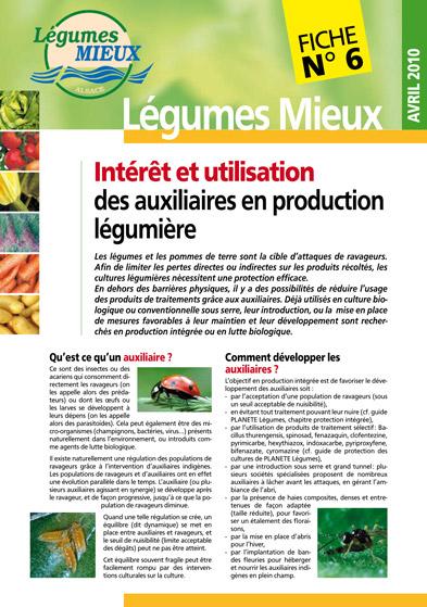 Fiche Légumes Alsace<br>n°6